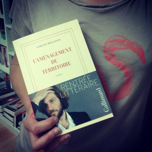 aurélien bellanger,l aménagement du territoire,gallimard,rentrée littéraire 2014