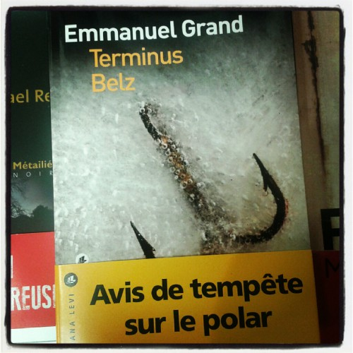 Terminus Belz, Emmanuel Grand, Liana Levi, delphine bouillo, mlire, littérature française