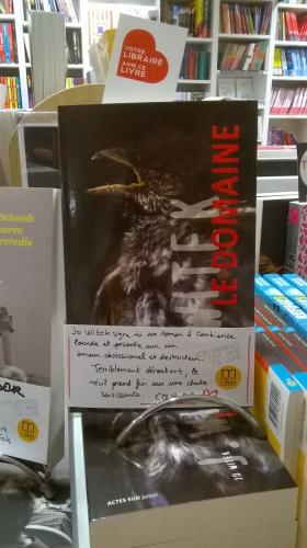 Le domaine, Jo Witek, Actes Sud, littérature ado, Solène Duroch, M'Lire, Laval