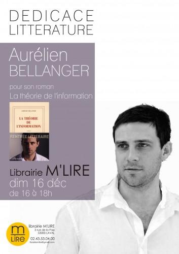 aurélien bellanger, la théorie de l'information, gallimard, m'lire